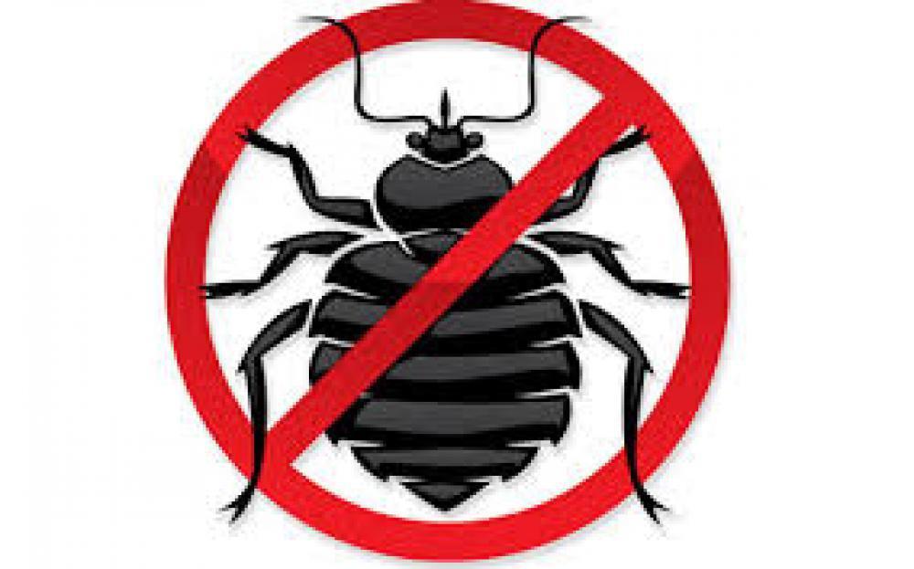 Продам препараты от тараканов клопов и тд по Украине дезслужба