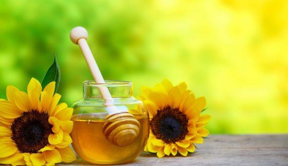 мед подсолнух 2020