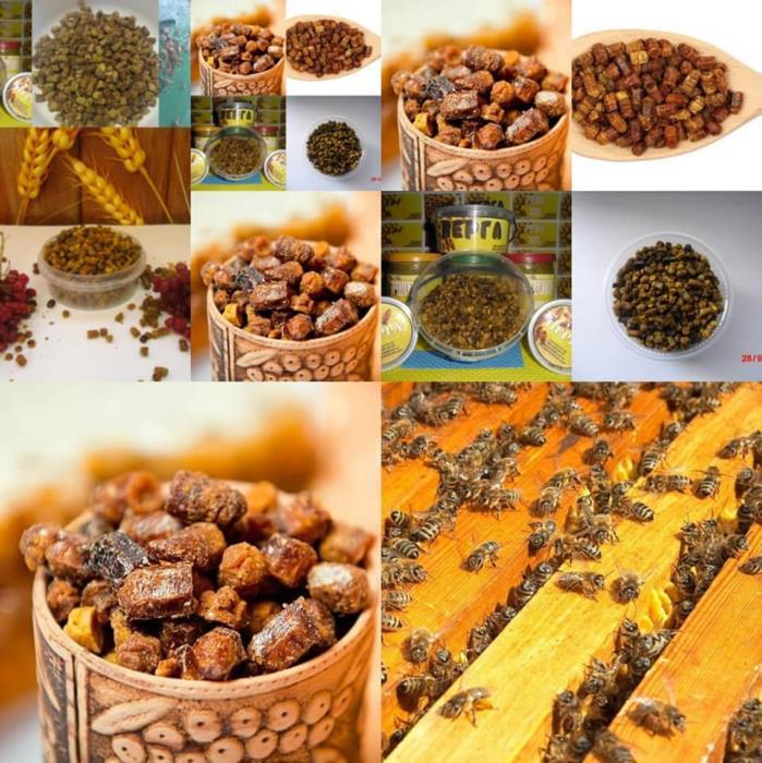 Перга пчелиный хлеб