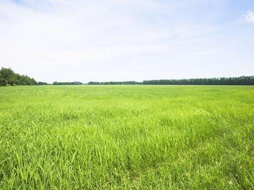 Срочно продам участок земли