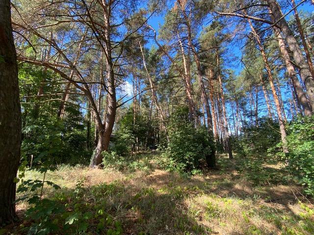 Продам земельный участок 25 соток в Обуховском районе Киевской области сТарасовка