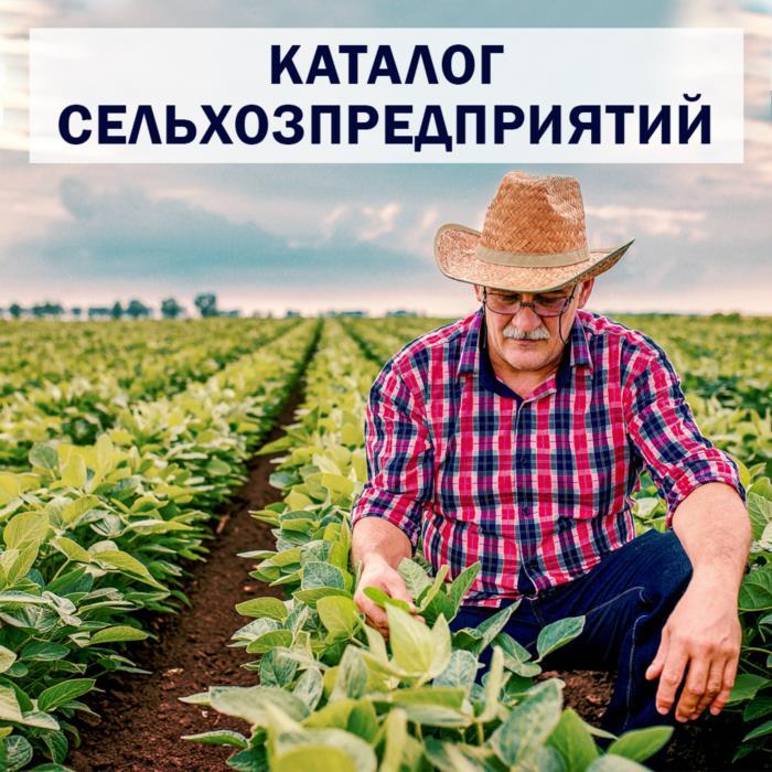 Каталог сельхозпредприятий Триполье Актуальные контакты