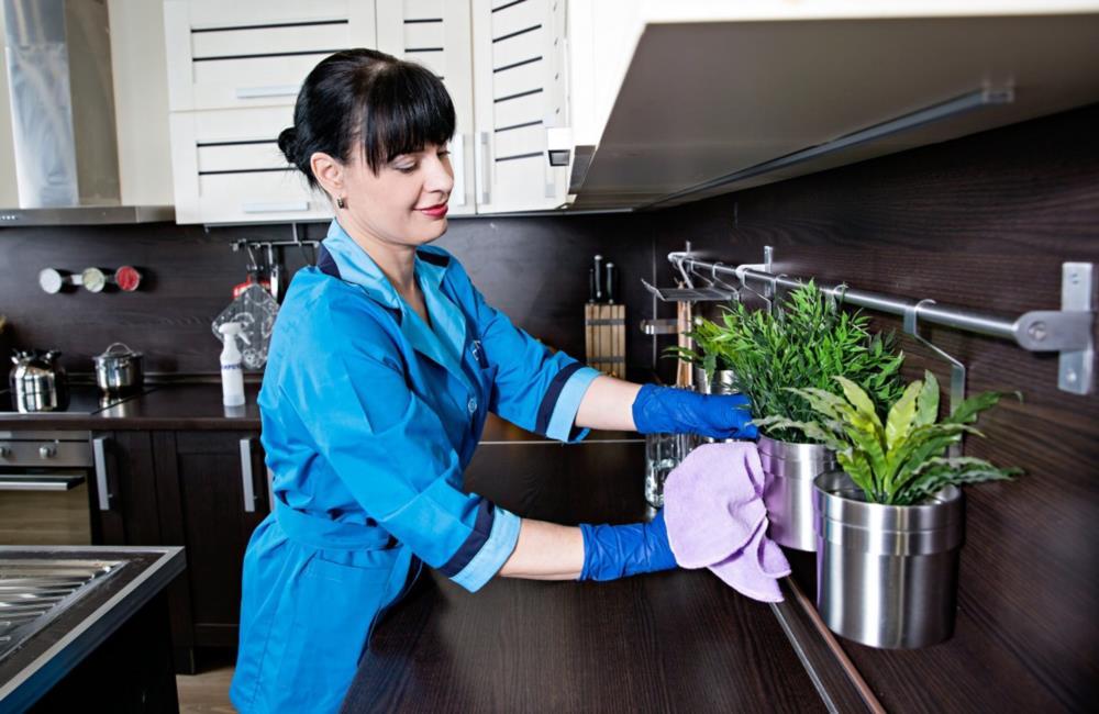 Ищем домработницу экономку для уборки домаквартиры