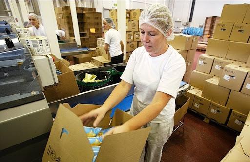 Работа на упаковке чая Lipton в Германии